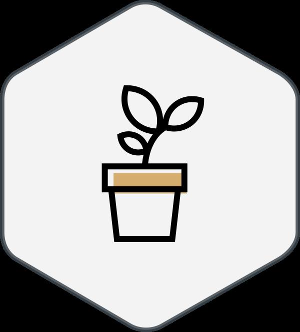 process_grow